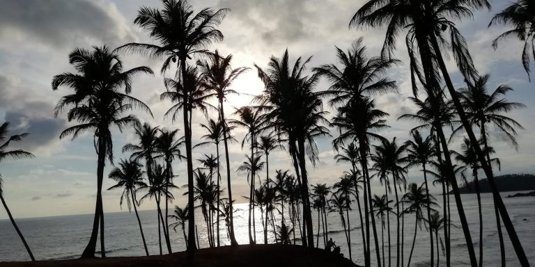Top 5 things to do in Mirissa – Sri Lanka