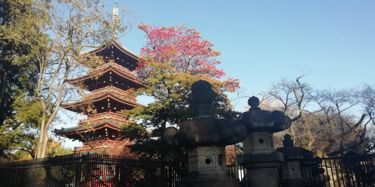 Read more about the article 10 tips – How to do Japan on a budget