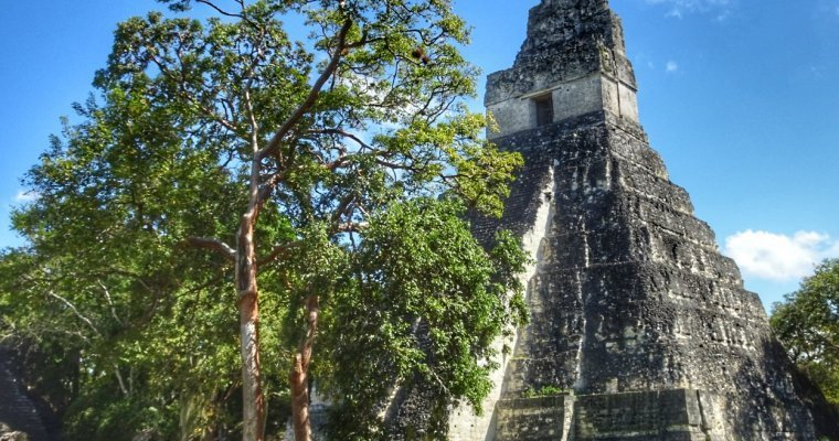 Tikal – A nature lovers guide