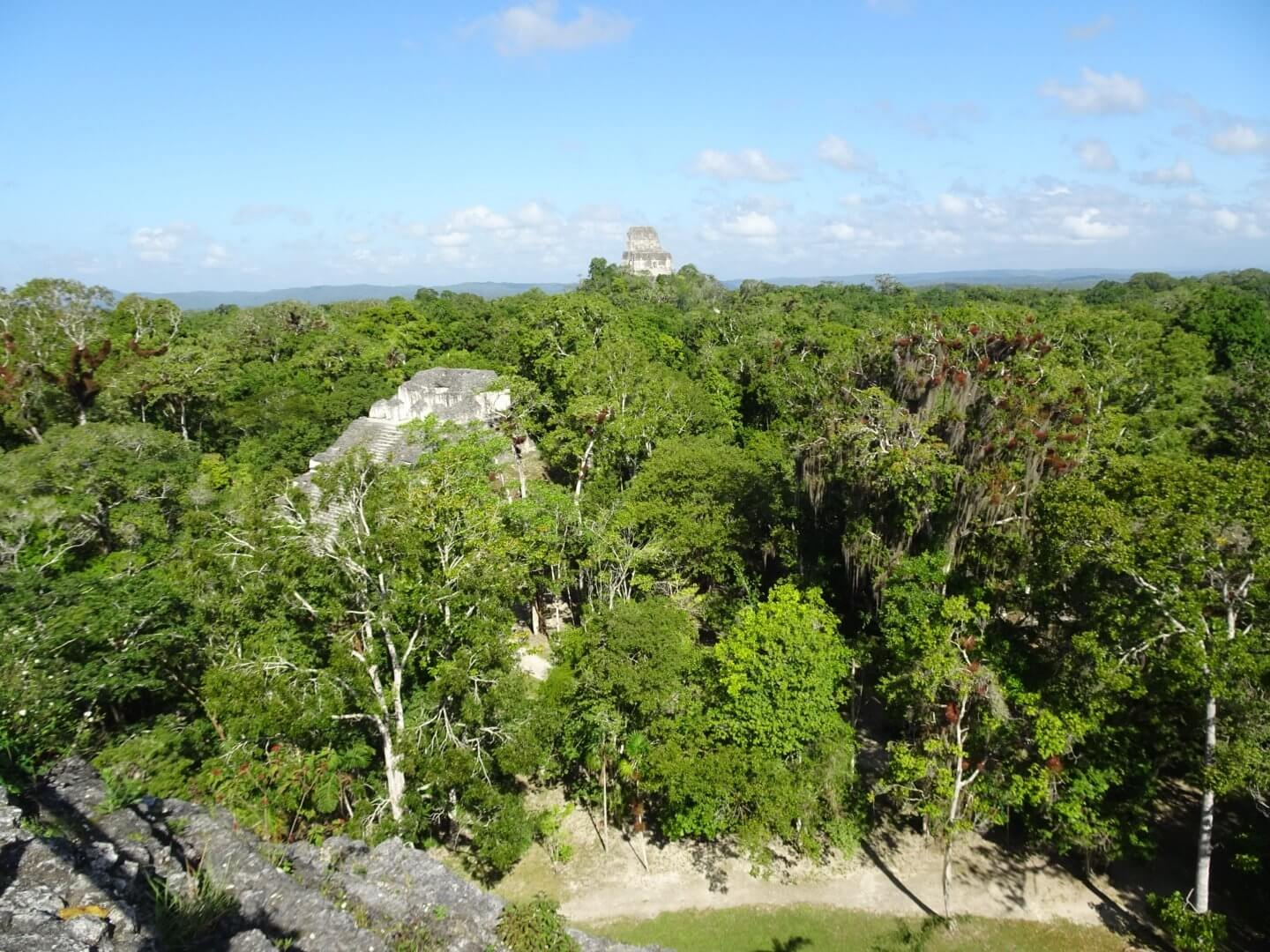 The view fro the Lost World pyramid Tikal Guatemala