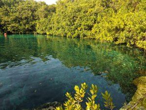 Casa cenote Yucatan Mexico