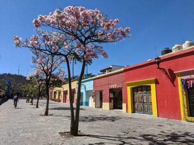 Best tings to do in Oaxaca City Colourful street